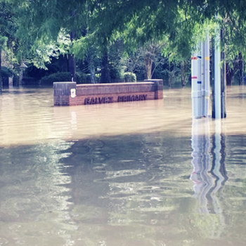 350-flood